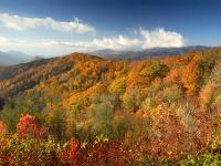 Smoky Mountains, NC