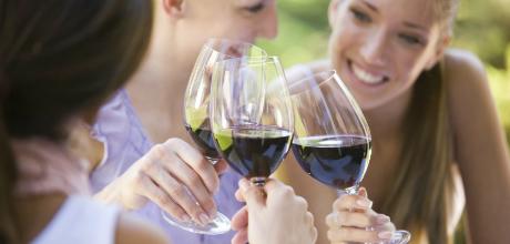 Wine Trips